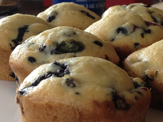 Vegan Blueberry Muffin