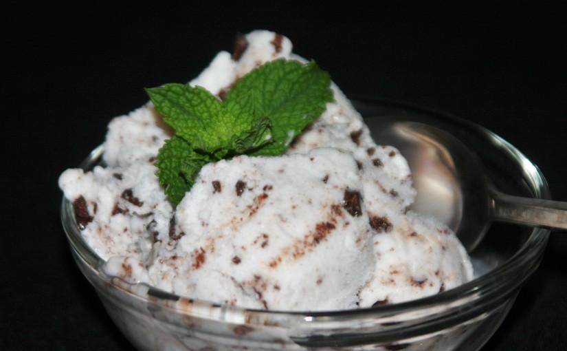 Vegan Mint Chocolate Chip IceCream