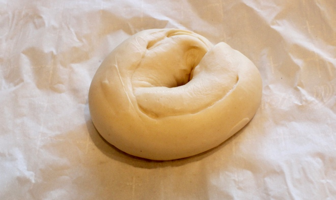 Bagel After fermentation, before boiling