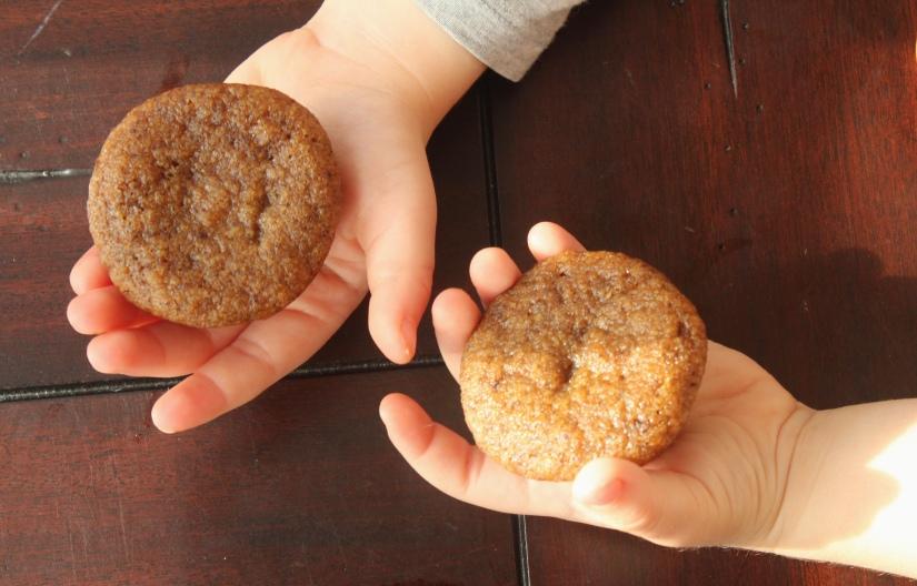 Breakfast These Days *** Pumpkin Muffins – Dairy Free, Grain Free,Paleo***